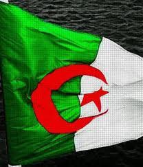 drapeau-dz