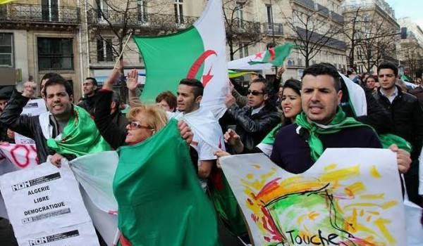 article-51-algerie